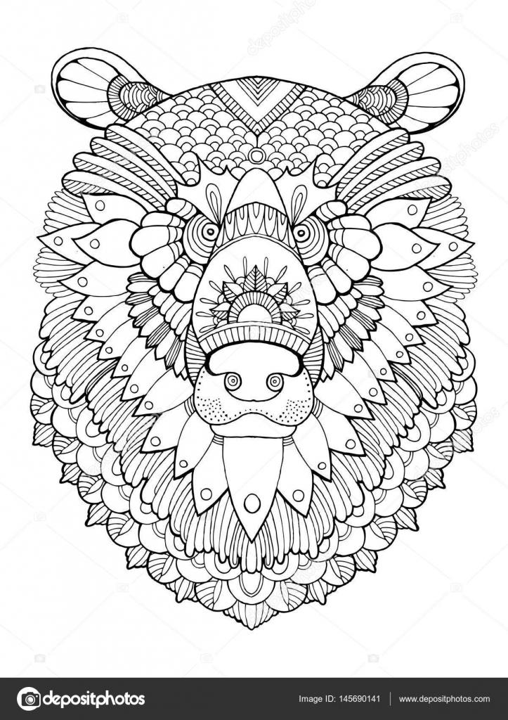 Ayı Kafası Kitap Vektör Illustration Boyama Stok Vektör
