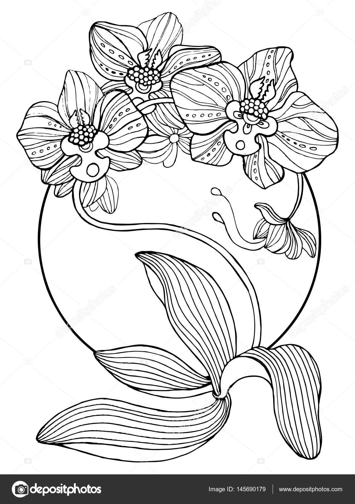 Orchid flowers coloring book vector illustration — Stock Vector ...