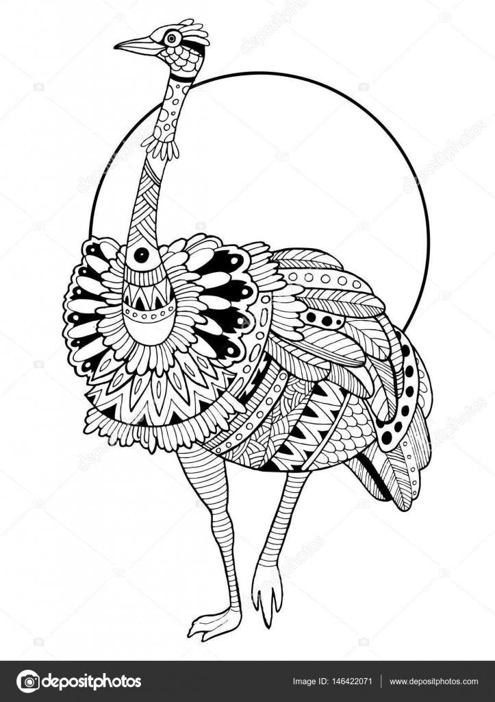 Devekuşu Kuş Kitap Vektör Illustration Boyama Stok Vektör