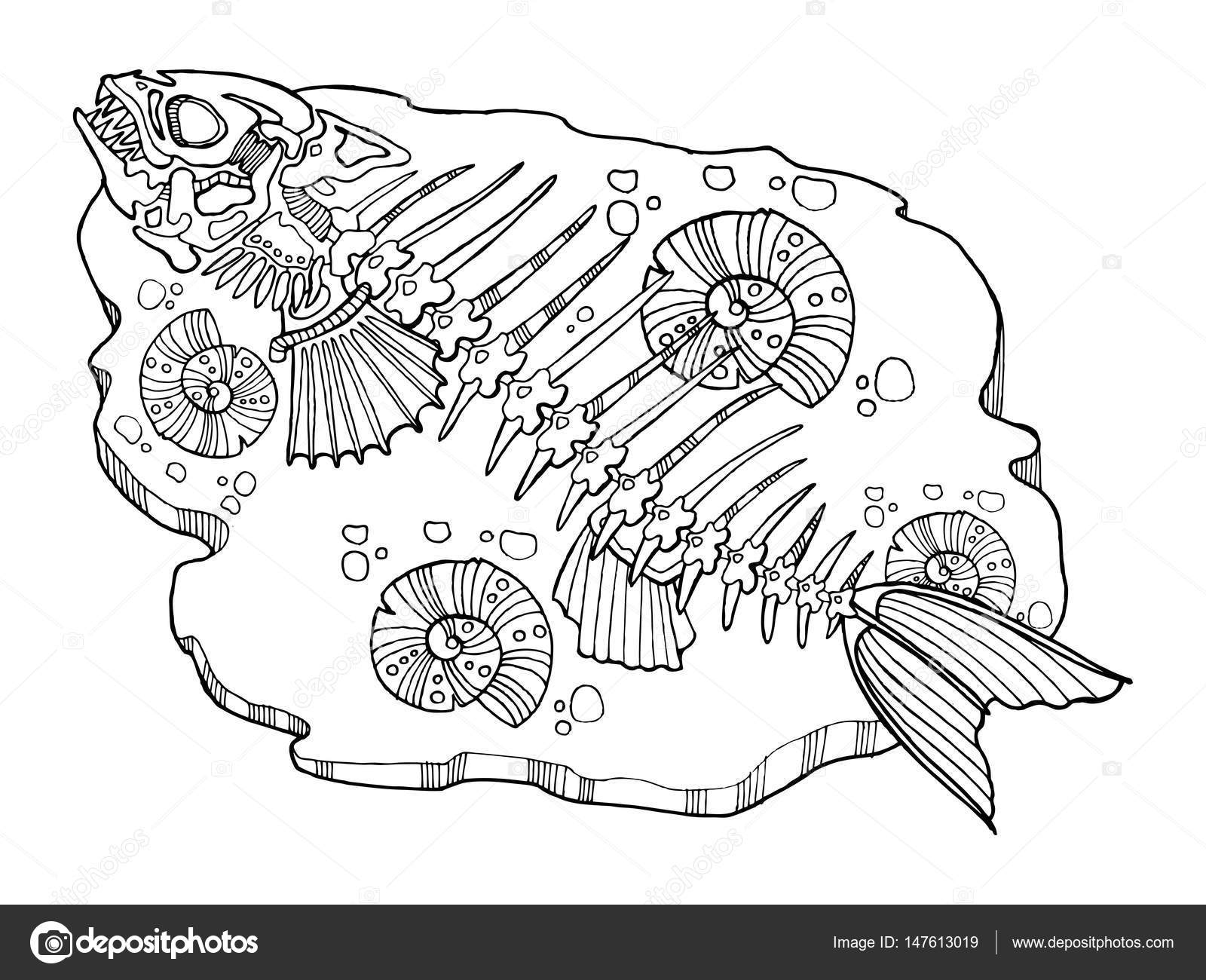 Skeleton Of Fish Coloring Book Vector Illustration Stock Vector