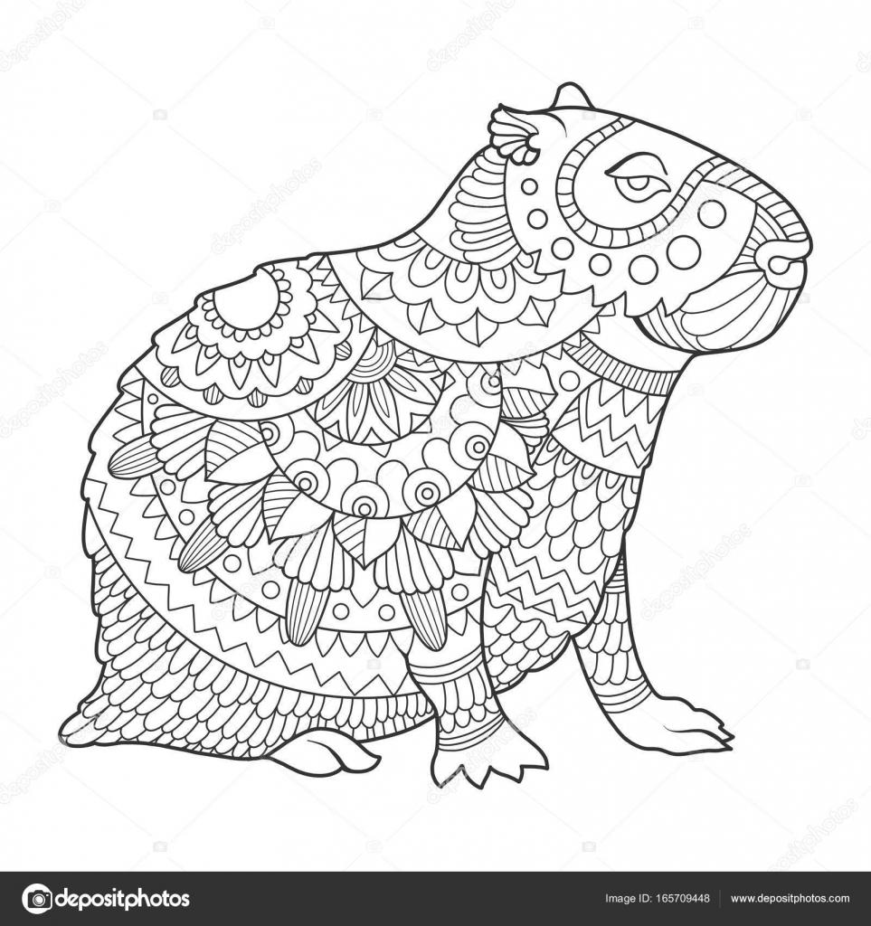 Capybara Coloring Book Vector Illustration Stock 165709448