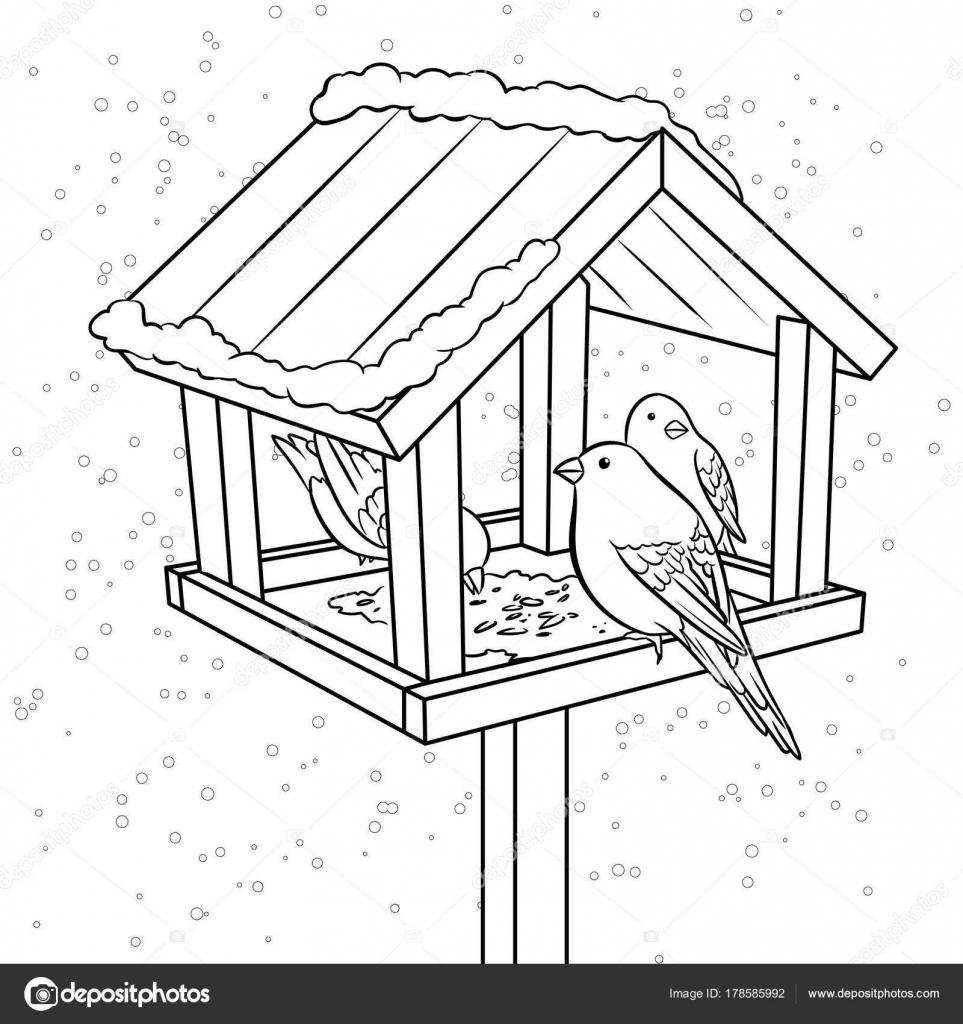 раскраска кормушка для птиц распечатать большинстве