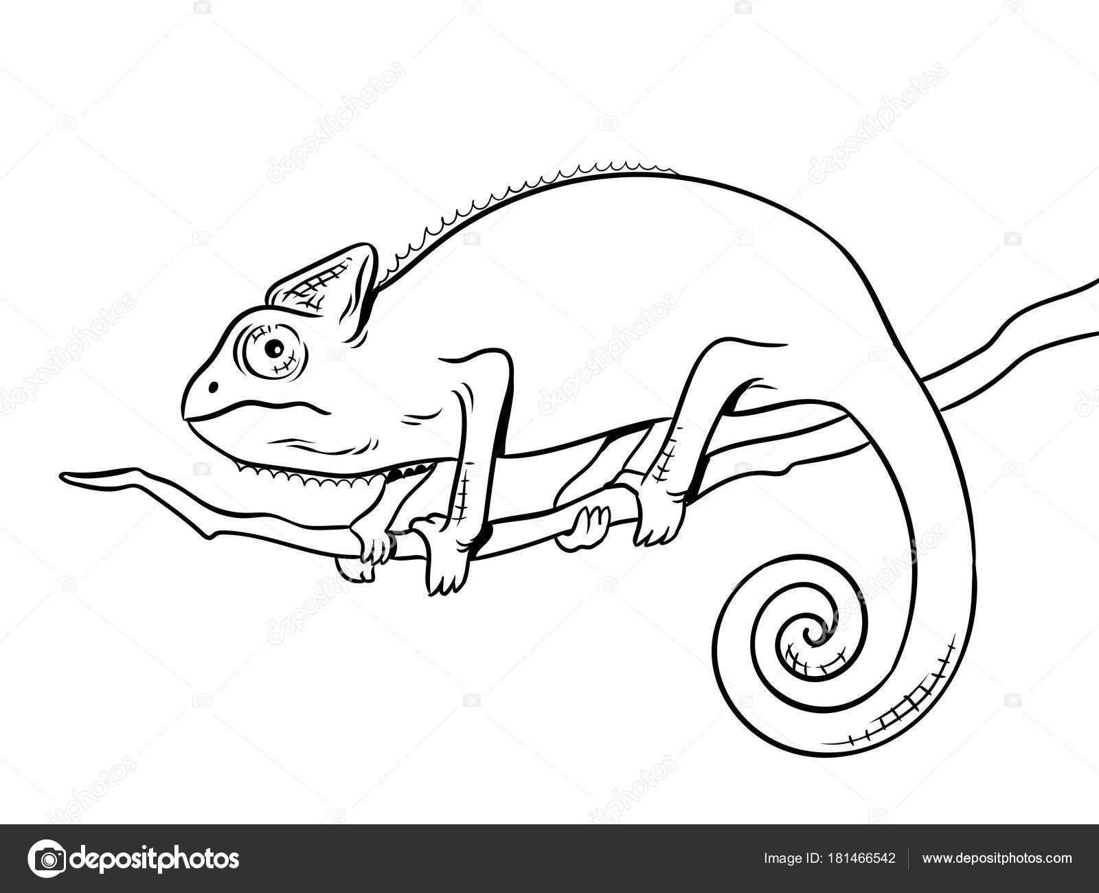 camaleón animal para colorear libro vector ilustración