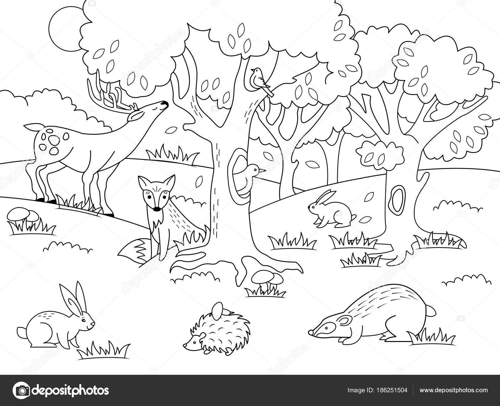 Dibujos Bosques Para Colorear Bosque De Dibujos Animados Para