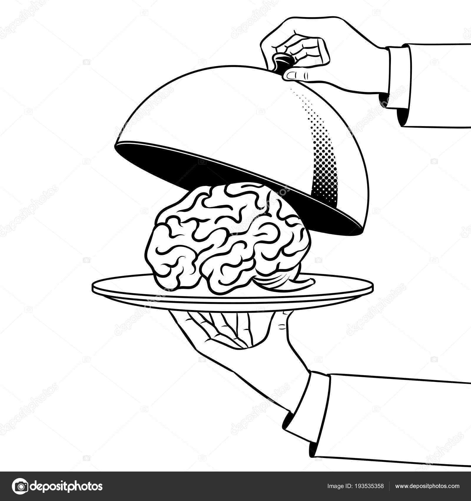 Cerebro en plato con cloche para colorear vector libro — Archivo ...