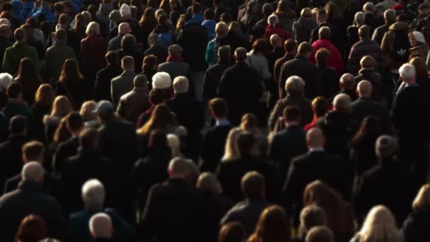 Medium telephoto shot of an anonymous cross-generation crowd attending a memorial event and lit by beautiful directional sunlight