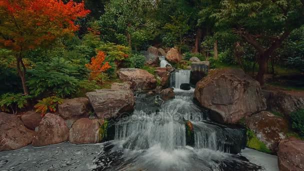 Cinemagraph stylu záběry krásné svěží japonská zahrada s tekoucí vody během časného podzimu