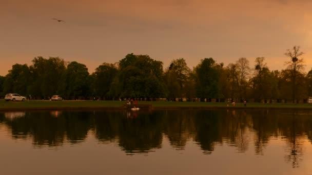 Bushy Park, Hampton Court, London, England, UK