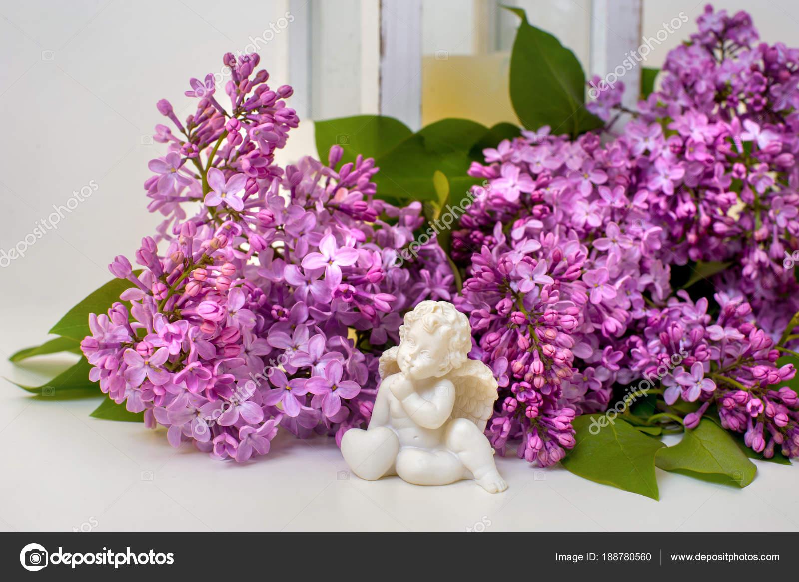 Romantyczny Martwa Natura Kwiat Bzu I Rzeźby Anioła Zdjęcie