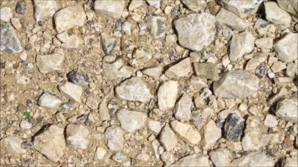 Textura venkovní kameny v zahradě