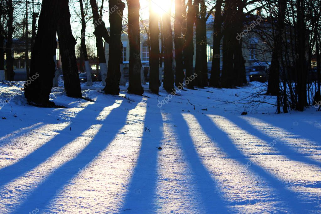 background of fresh white snow winter outdoor with stripes of shadows from trees.