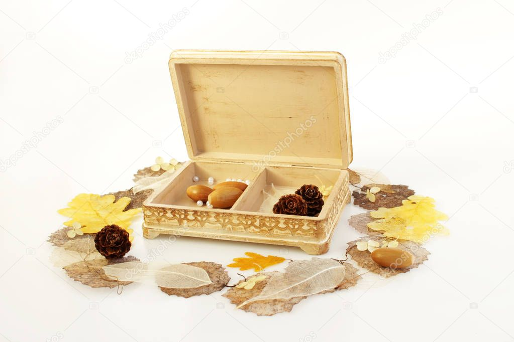 open wooden hand-made box with skeletonized leaves, acorns and cones on a white background