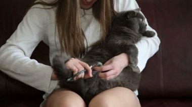 těsné dospívající kočička zblízka