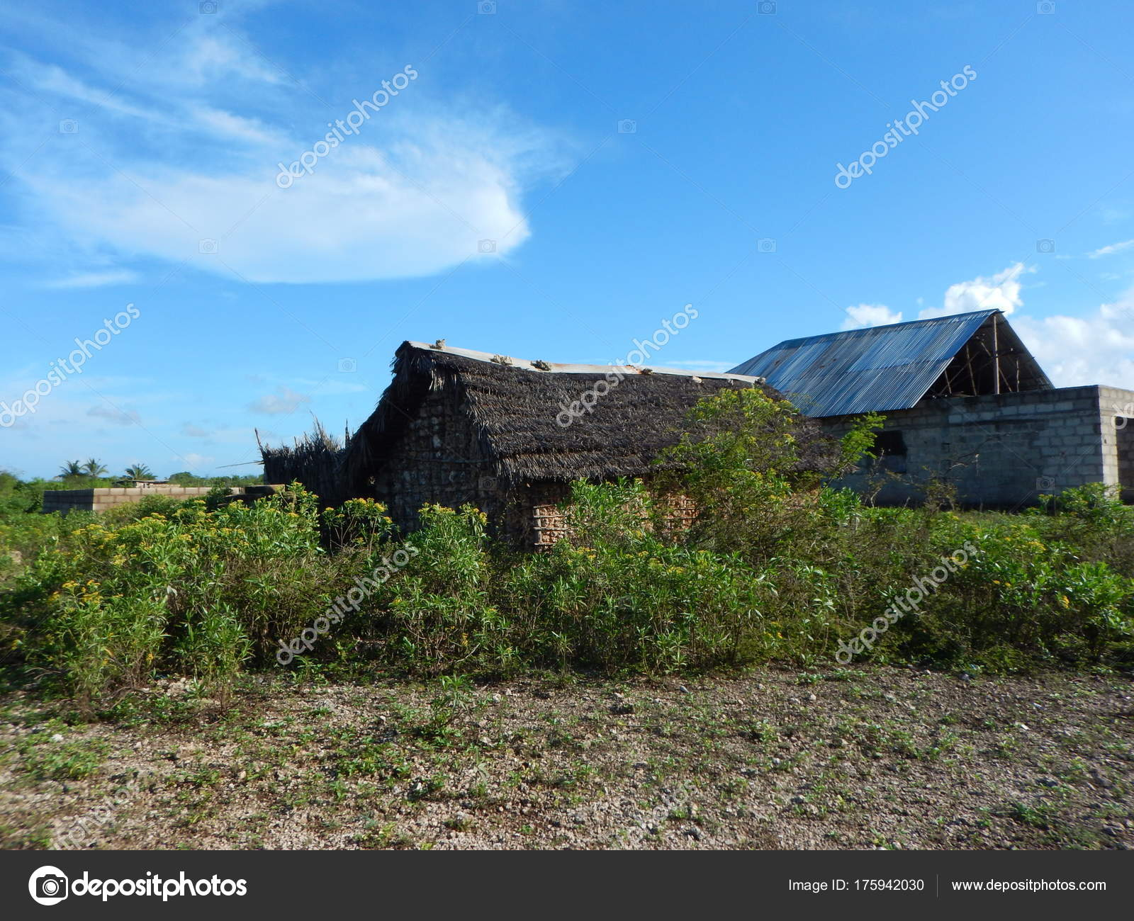 Simple House In A Village In Zanzibar Stock Photo Luciezr 175942030