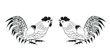 Fighting cocks on a white background
