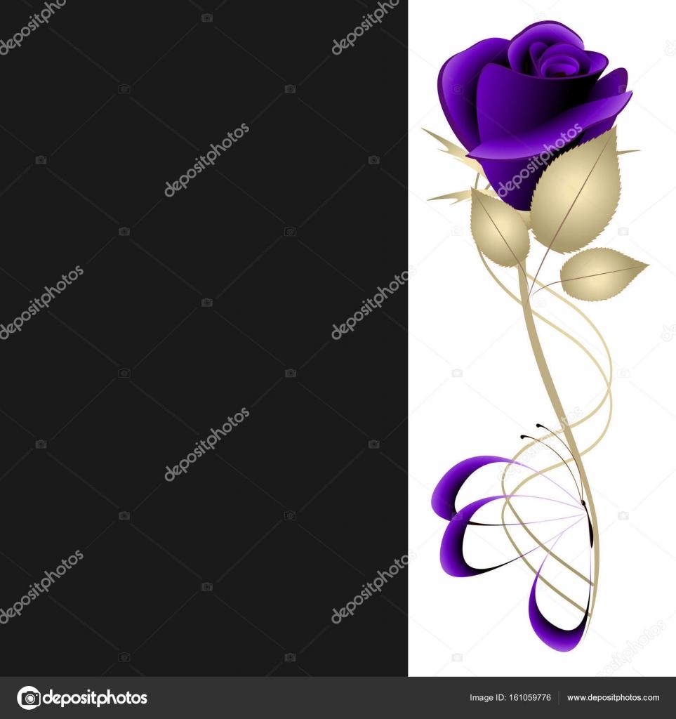 Sfondo Bianco E Nero Con Una Rosa Viola Vettoriali Stock