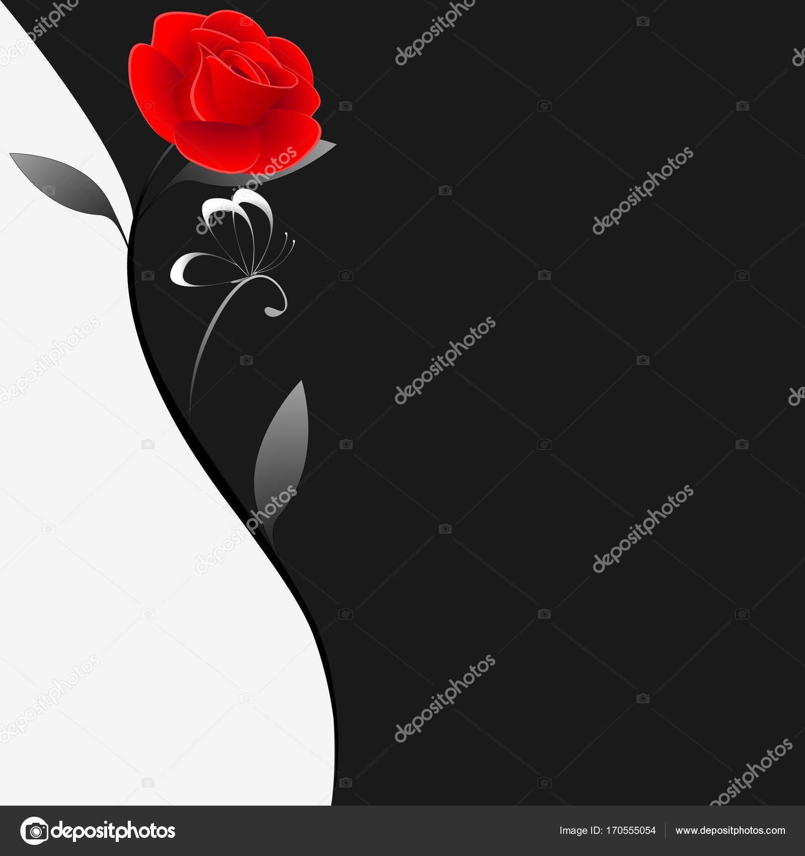 Illustrazione Rosa Rossa Bianco E Nero Sfondo Floreale Bianco E