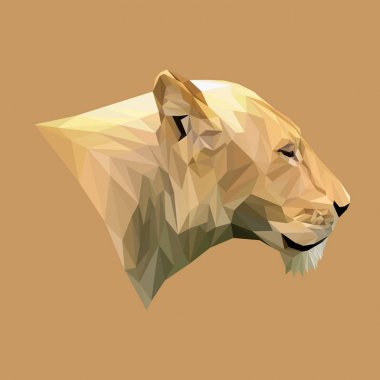 Lioness animal low poly design.