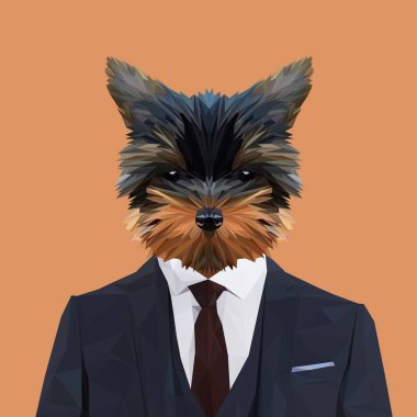 Terrier puppy in suit