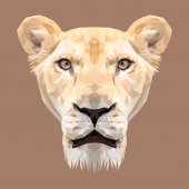 Photo Lioness animal low poly design.