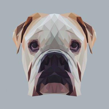 English bulldog dog animal low poly design