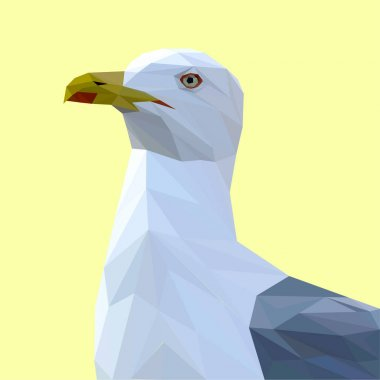 Seagull bird low poly design