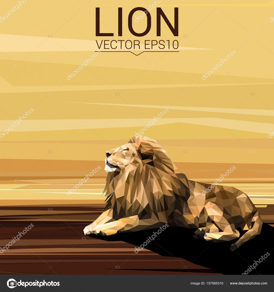 Lion low poly design — Stock Vector © Shekularaz #157565310