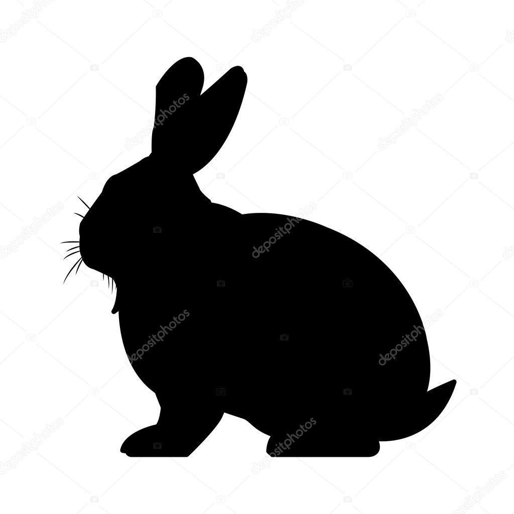 desenho de coelho preto e branco vetores de stock jemastock