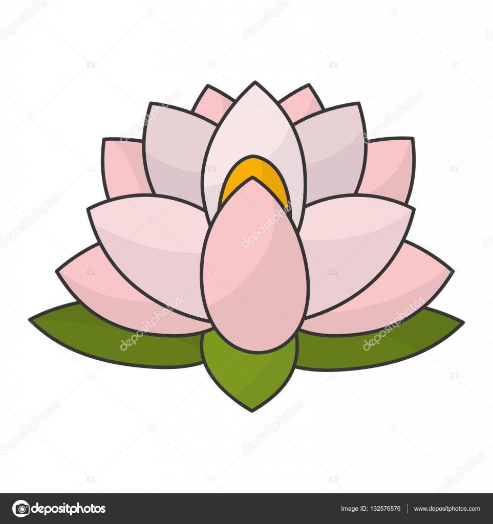 Indian Lotus Flower Stock Vector Jemastock 132576576