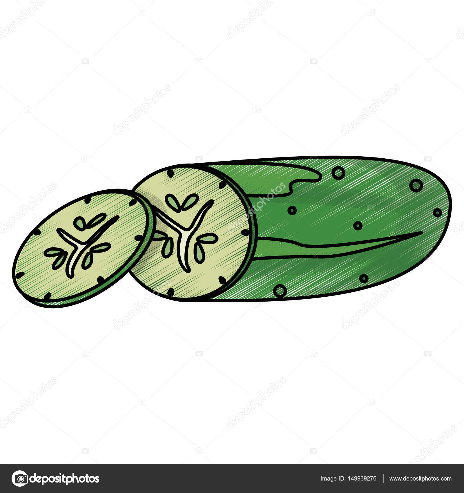 drawing cucumber food nutrition — Stock Vector © jemastock #149939276 for Drawing Cucumber  570bof