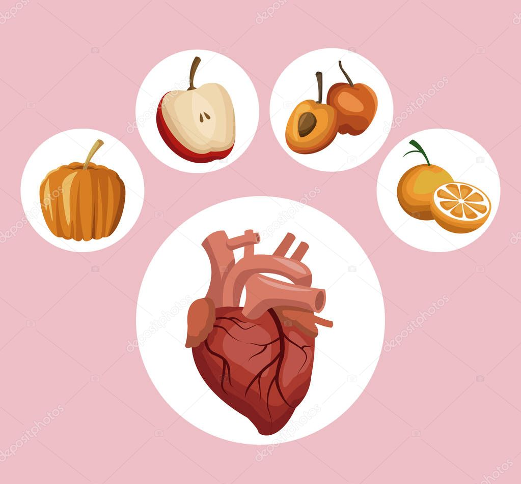 color background with circular frame heart organ and pumpkin vegetable and fruits healthy food icons