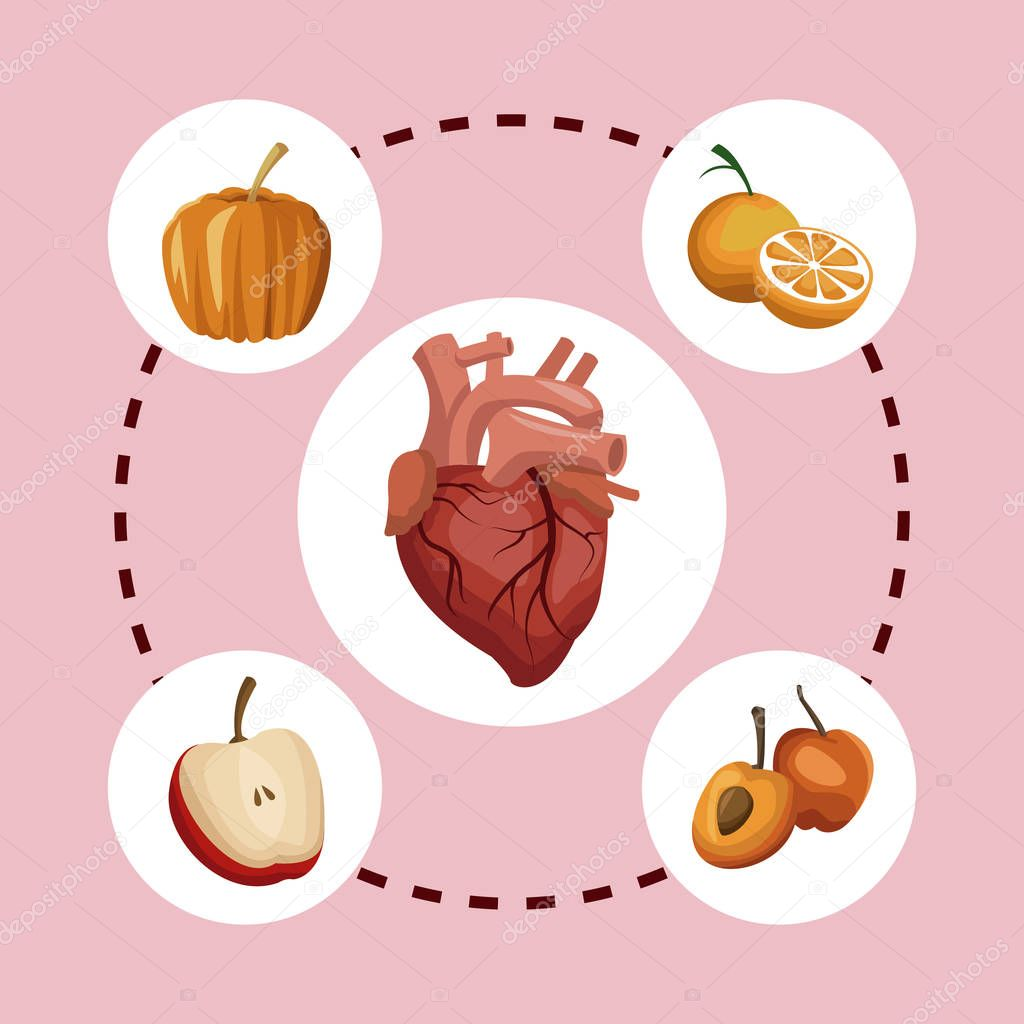 color background circular frame with heart organ and pumpkin with fruits healthy food around