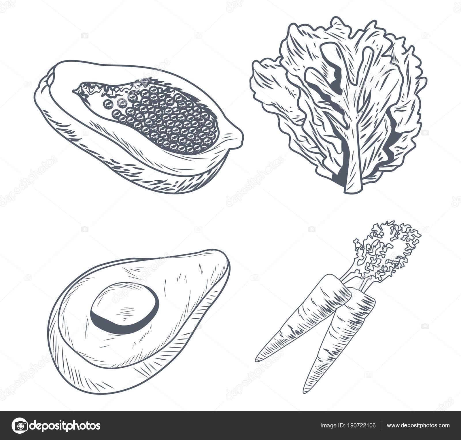 Fotos Carpa Preto E Branco Alimentos Sanos Y Frescos Vector De