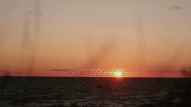 Růžovo oranžové západ slunce na strana k moři s suché trávy, kýval v nárysu Časosběrná videa
