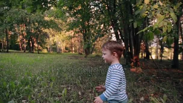 ein niedlicher kleiner Junge, der an einem sonnigen Sommertag fröhlich im Gras in einem Park spaziert. Langsames Wachstum