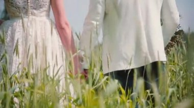 Back view of a couple in love, bride and groom walking in a wheat field, holding hands on their wedding.