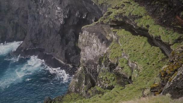 Krásná krajina racků létání blízko propasti, Černá Hora zahrnuty moss na Islandu