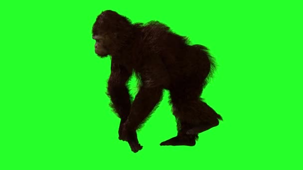 gorilla goes on a green background, 3D render