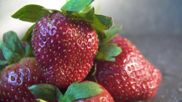 jahody zavřít na tmavém pozadí