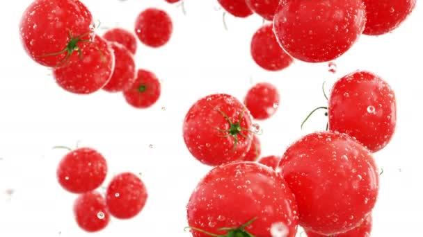 Čerstvá rajčata s kapkami vody. Jídlo koncept. Izolovat s Alfa podkladu