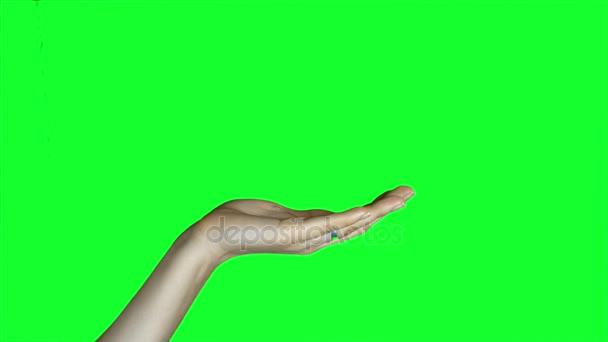 Ženské ruce na zelené obrazovce.