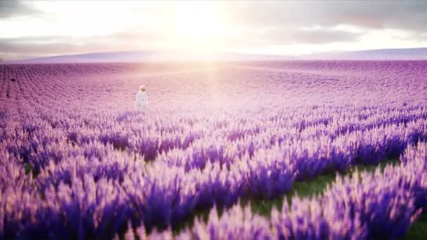 Astronaut with butterflies in lavender field. concept of future. broadcast. Realistic 4k animation.
