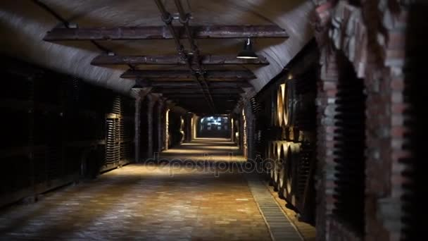 wine bottle and barrels in winery cellar