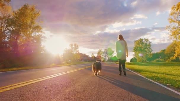 Procházky se psem v západu slunce. Mladá žena je na vodítku australského ovčáka krásné oblohy za jasného podzimního dne. Steadicam zpomalený záběr