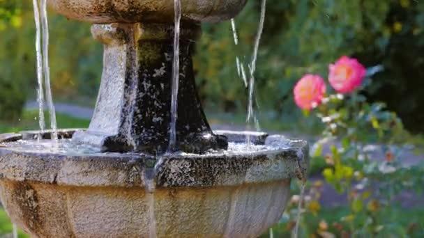 Zahradní architektura. Malá fontánka, poblíž fontány pěstovat růže.