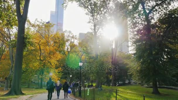 New York, USA - OKT, 2016: People walking along the alley in Central Park in NYC. Sun get behind the skyscrapers, beautiful evening
