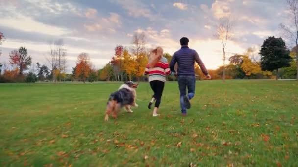 Viel Spaß mit Ihrem geliebten Hund. junges multiethnisches Paar beim Laufen im Park. Steadicam-Zeitlupenaufnahme. zurück