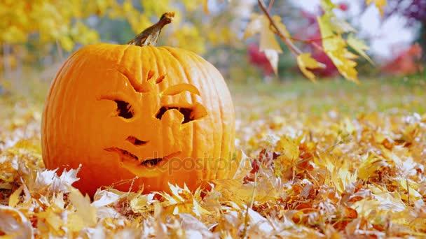 Symbolem Halloweenu. Vyřezávané dýně leží na žluté listy