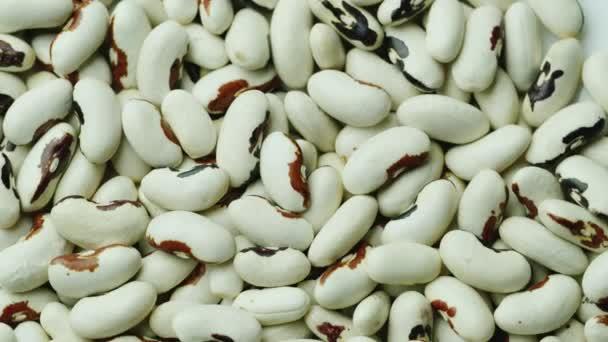 Hintergrund aus weißen Bohnen. gesunde biologische Lebensmittel
