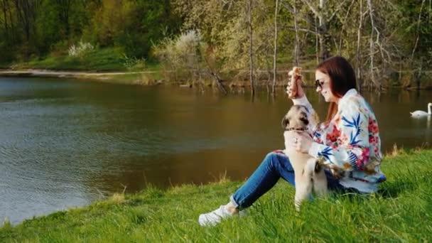 Ruhe im Park mit einem Hund und einem Snack auf dem Sprung Hot Dog. eine junge Frau sitzt am See in einem Park und spielt mit ihrem Mops